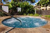 2695 Kihei Rd - Photo 19