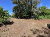 E Kamehameha V Hwy - Photo 12