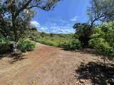E Kamehameha V Hwy - Photo 8