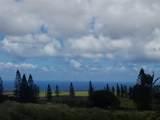 Halena St - Photo 2