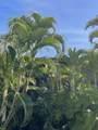 3788 Lower Honoapiilani Rd - Photo 8