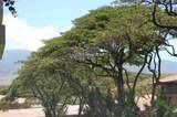 2481 Kaanapali Pkwy - Photo 15