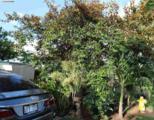 543 Kaiolohia St - Photo 10