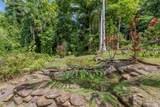 400 Honokala Stream Rd - Photo 3