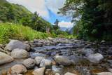 200 Iao Valley Rd - Photo 15