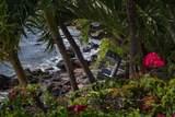3911 Maalaea Bay Pl - Photo 24