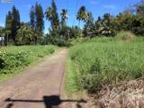 459 Keanae Rd - Photo 10