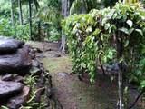 400 Honokala Stream Rd - Photo 25