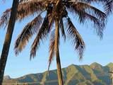 140 Lower Waiehu Beach Rd - Photo 6