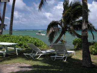 10400 Kamehameha V Hwy #78, Kaunakakai, HI 96748 (MLS #369146) :: Elite Pacific Properties LLC