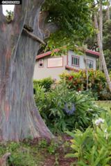 16 Heaaula St #1, Haiku, HI 96708 (MLS #370645) :: Elite Pacific Properties LLC