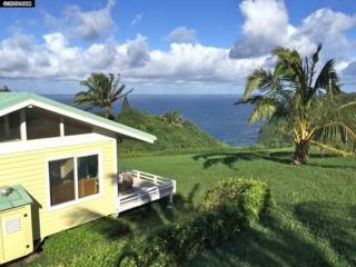 802 Door Of Faith Rd, Haiku, HI 96708 (MLS #371000) :: Elite Pacific Properties LLC