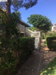 140 Uwapo Rd 54-104, Kihei, HI 96753 (MLS #373358) :: Elite Pacific Properties LLC