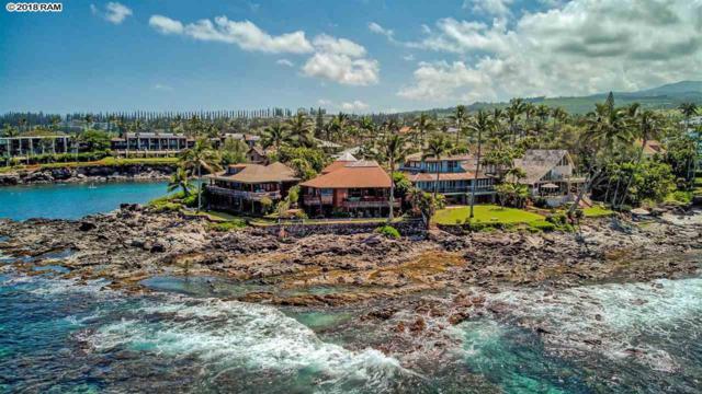 39 Papaua Pl, Lahaina, HI 96761 (MLS #377677) :: Elite Pacific Properties LLC