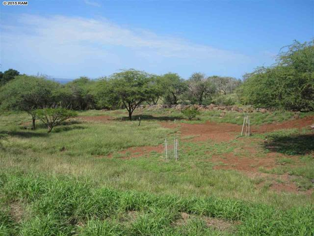 0 Waiokama Pl Lot 45, Kaunakakai, HI 96748 (MLS #364548) :: Elite Pacific Properties LLC