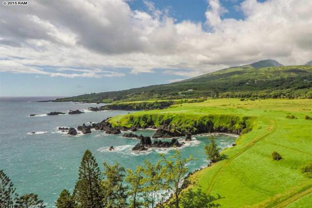 Hana Hwy, Hana, HI 96713 (MLS #367283) :: Elite Pacific Properties LLC