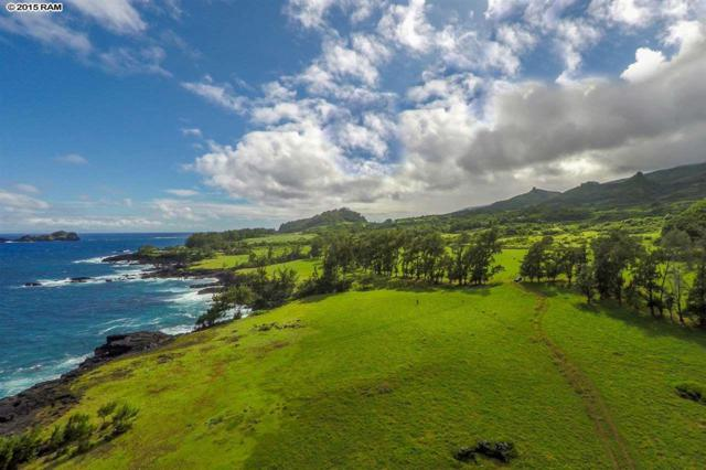 Hana Hwy, Hana, HI 96713 (MLS #367284) :: Elite Pacific Properties LLC