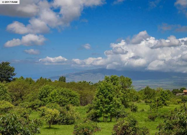 365 Keoni Pl #2, Kula, HI 96790 (MLS #374097) :: Island Sotheby's International Realty