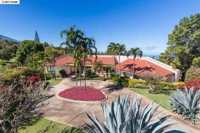 891 Holopuni Rd, Kula, HI 96790 (MLS #374118) :: Elite Pacific Properties LLC