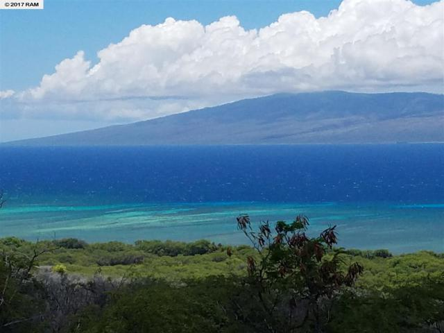 Lot 96 Onioni Dr, Kaunakakai, HI 96748 (MLS #374202) :: Island Sotheby's International Realty
