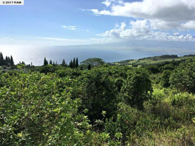 27 Hulumanu Pl Mcr 35, Wailuku, HI 96793 (MLS #374590) :: Island Sotheby's International Realty