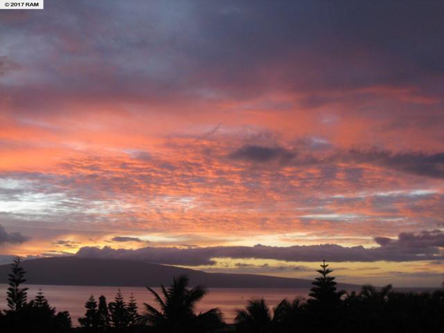 199 Paia Pohaku St, Lahaina, HI 96761 (MLS #374610) :: Island Sotheby's International Realty