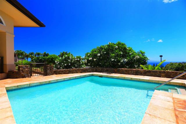365 Kului Way, Lahaina, HI 96761 (MLS #374817) :: Elite Pacific Properties LLC