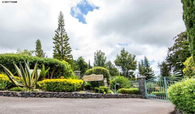 16290 Haleakala Hwy, Kula, HI 96790 (MLS #374925) :: Elite Pacific Properties LLC
