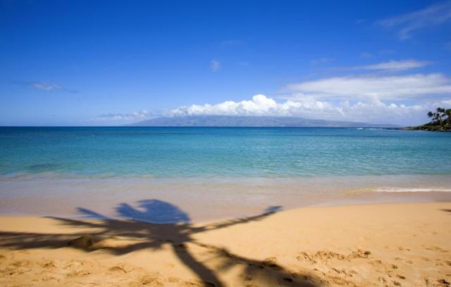500 Kapalua Dr 16P1-2, Lahaina, HI 96761 (MLS #375022) :: Island Sotheby's International Realty