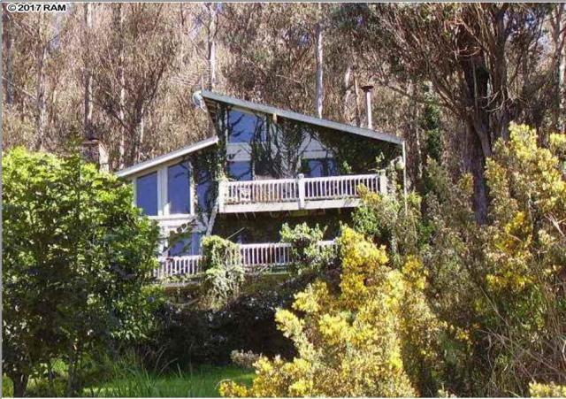 98 Alaluana Rd, Makawao, HI 96768 (MLS #375214) :: Island Sotheby's International Realty