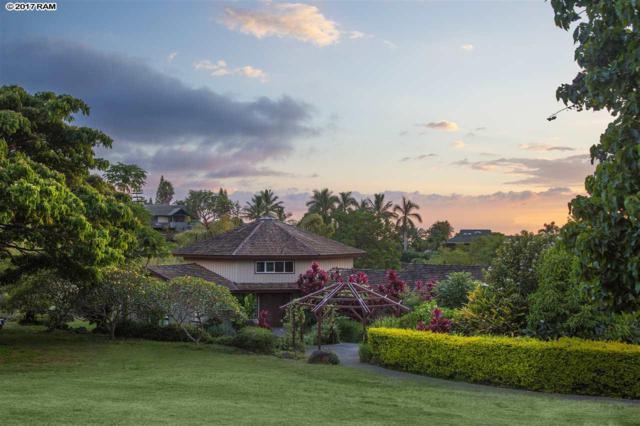 20 Pea Pl, Kula, HI 96790 (MLS #375505) :: Island Sotheby's International Realty