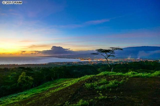 0 Malaihi Rd, Wailuku, HI 96793 (MLS #375568) :: Elite Pacific Properties LLC