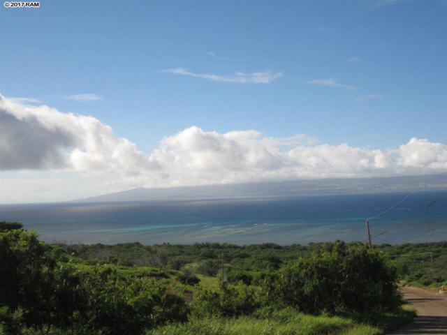 90 Onioni Dr, Kaunakakai, HI 96748 (MLS #375605) :: Elite Pacific Properties LLC