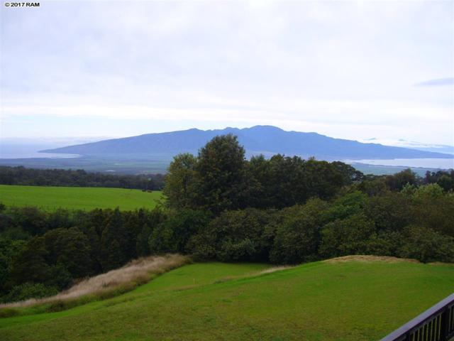 1854 Olinda Rd, Makawao, HI 96768 (MLS #375619) :: Island Sotheby's International Realty
