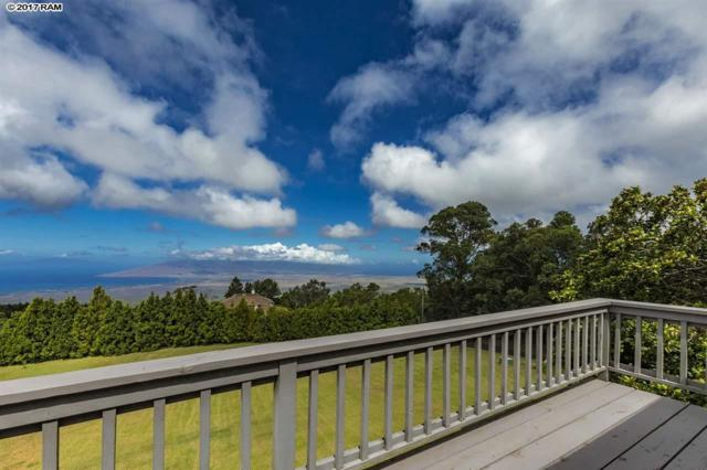 100 Kawehi Pl, Kula, HI 96790 (MLS #375776) :: Island Sotheby's International Realty