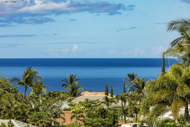 300 Pualoa Nani Pl, Kihei, HI 96753 (MLS #375846) :: Elite Pacific Properties LLC
