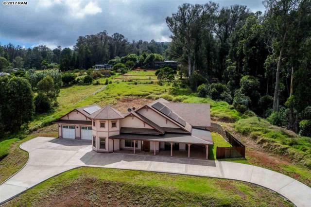 47 Naniuka Pl, Makawao, HI 96768 (MLS #375924) :: Island Sotheby's International Realty