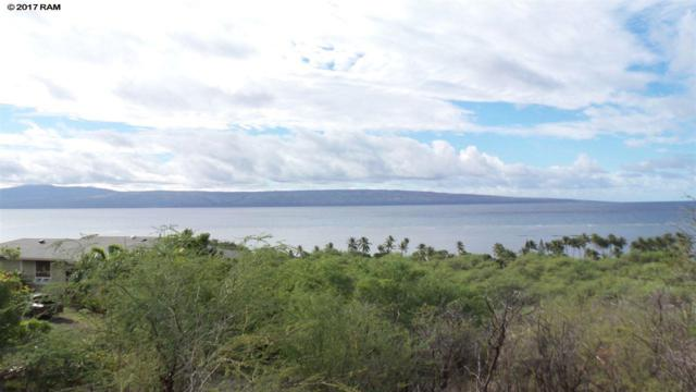 281 Uluanui Rd, Kaunakakai, HI 96748 (MLS #375963) :: Elite Pacific Properties LLC
