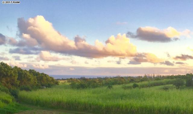 661 Kauhikoa Rd, Haiku, HI 96708 (MLS #375989) :: Island Sotheby's International Realty