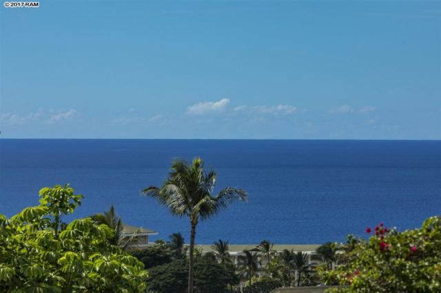 10 Wailea Ekolu Pl #805, Kihei, HI 96753 (MLS #376126) :: Elite Pacific Properties LLC