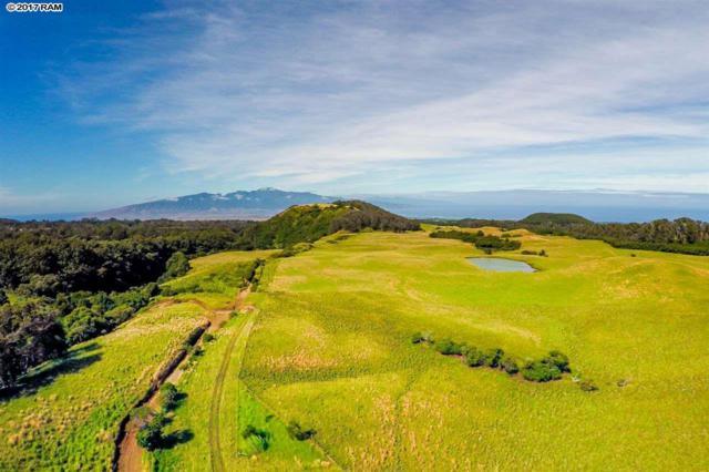 Waiahiwi Rd, Makawao, HI 96768 (MLS #376129) :: Island Sotheby's International Realty