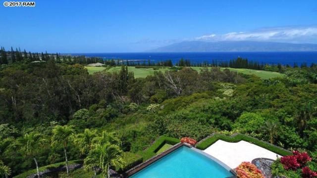 229 Plantation Club Dr, Lahaina, HI 96761 (MLS #376238) :: Island Sotheby's International Realty