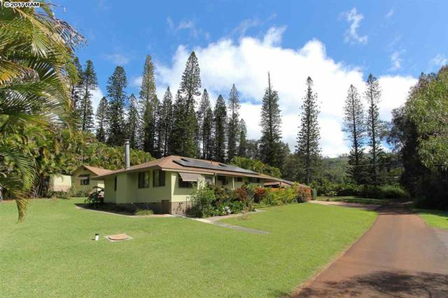452 Ohia Dr, Lanai City, HI 96763 (MLS #376299) :: Elite Pacific Properties LLC