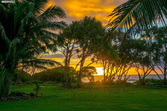 0 Haneoo Rd, Hana, HI 96713 (MLS #376325) :: Elite Pacific Properties LLC