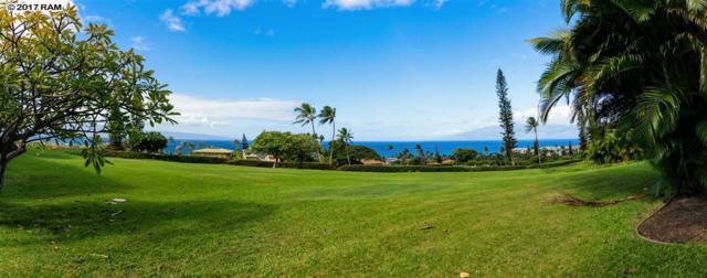 50 Puu Anoano St #905, Lahaina, HI 96761 (MLS #376336) :: Elite Pacific Properties LLC