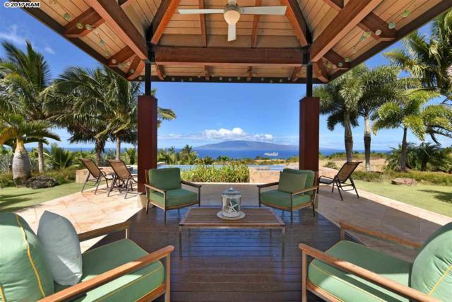 33 Lau Awa Pl, Lahaina, HI 96761 (MLS #376382) :: Elite Pacific Properties LLC