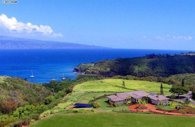 105 Keoawa Pl #3, Lahaina, HI 96761 (MLS #376609) :: Island Sotheby's International Realty