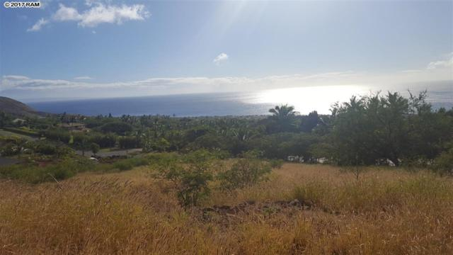 16 Kumu Niu Pl, Lahaina, HI 96761 (MLS #376679) :: Island Sotheby's International Realty