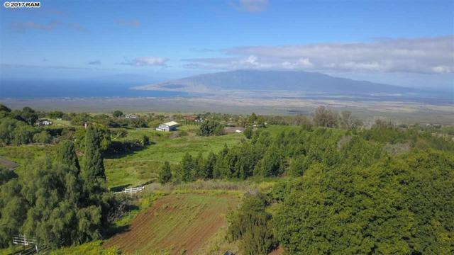 302 Naalae Rd, Kula, HI 96790 (MLS #376686) :: Elite Pacific Properties LLC