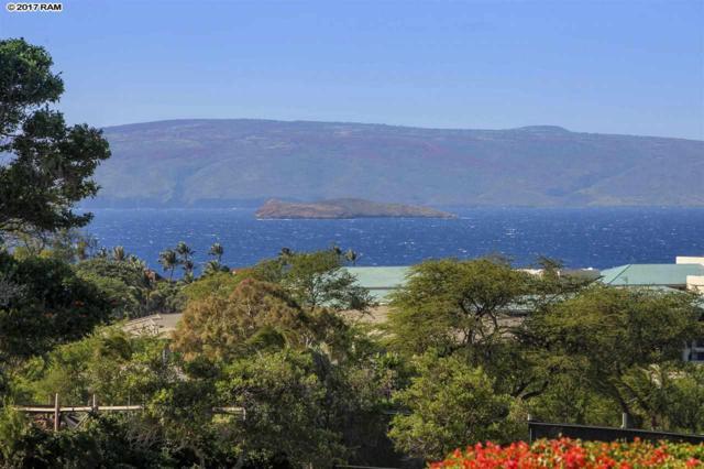 10 Wailea Ekolu Pl #1405, Kihei, HI 96753 (MLS #376763) :: Elite Pacific Properties LLC